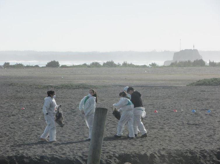 Limpieza de Playas. Aniversario Colegio